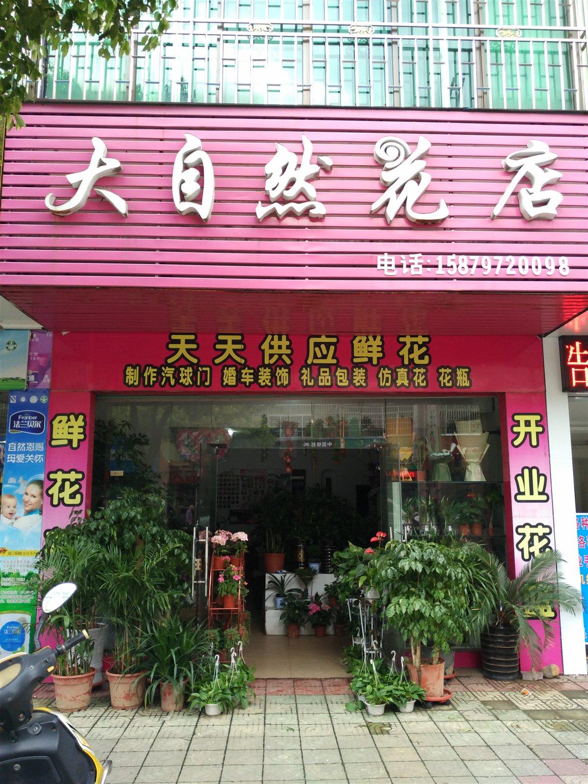 471654大自然花店