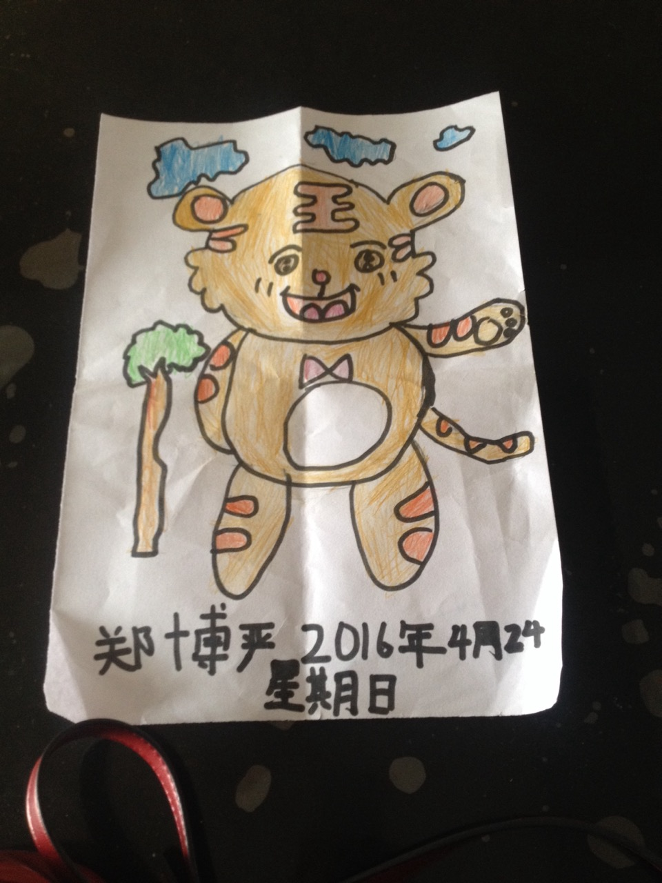 081郑博严