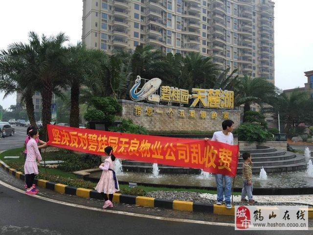 鹤山共和碧桂园天麓湖物管乱收费,业主维权!