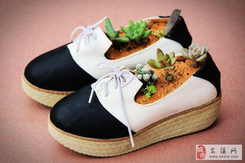 安溪人,待你鞋子不穿时,借我种花可好?