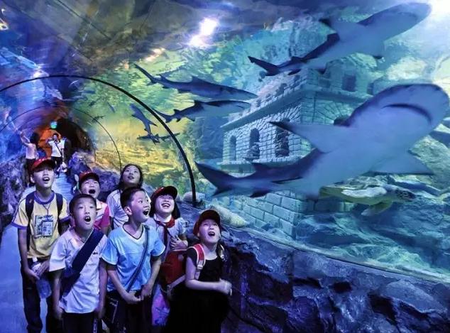 壁纸 动漫 海底 海底世界 海洋馆 卡通 漫画 水族馆 头像 634_469