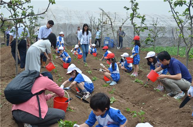 六一儿童节 现代绿色农业引来小小异国体验客