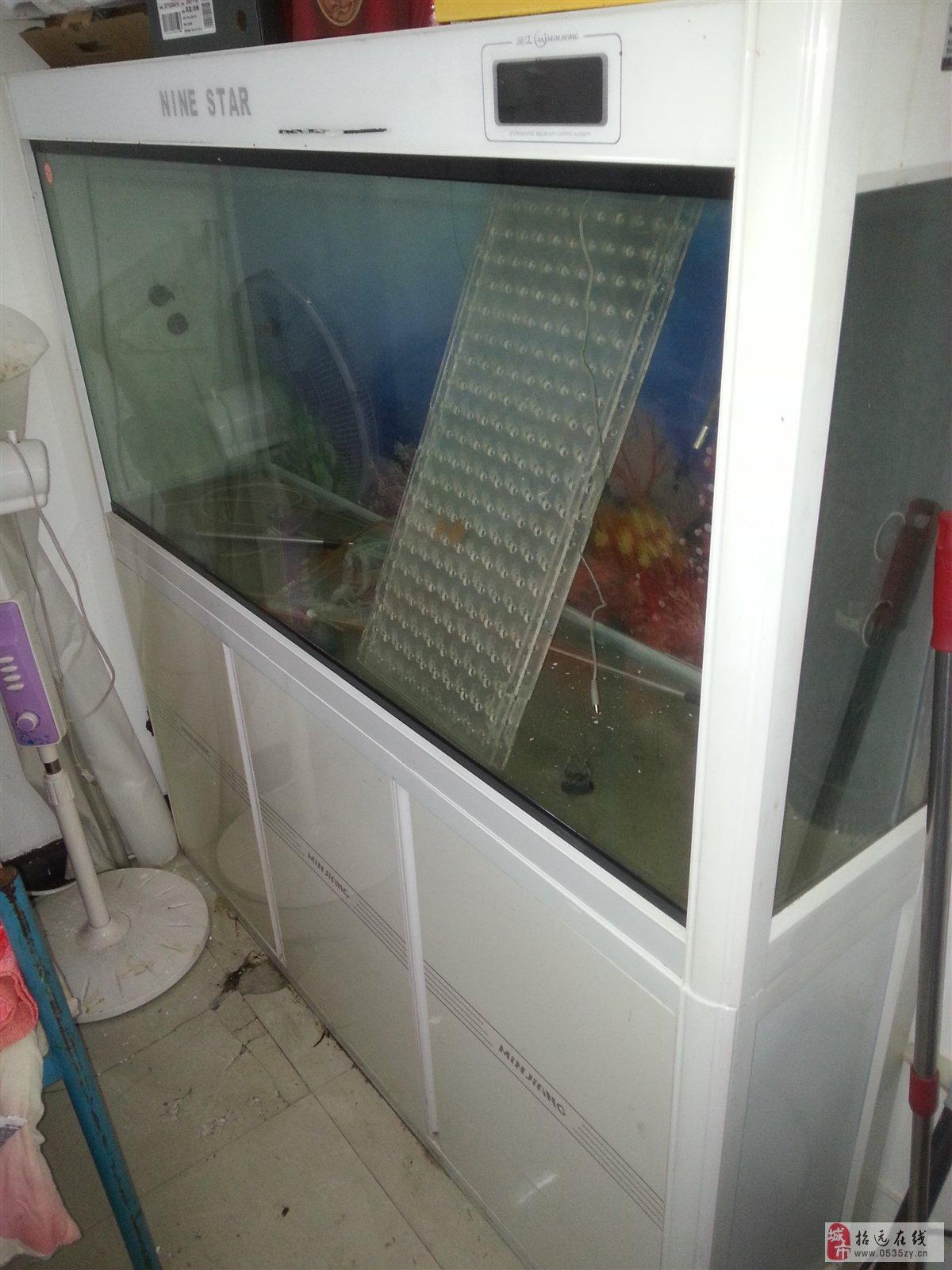 招远9成新1.5米底滤鱼缸出售