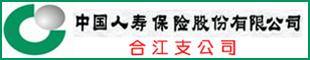 中国人寿保险公司合江支公司个险部