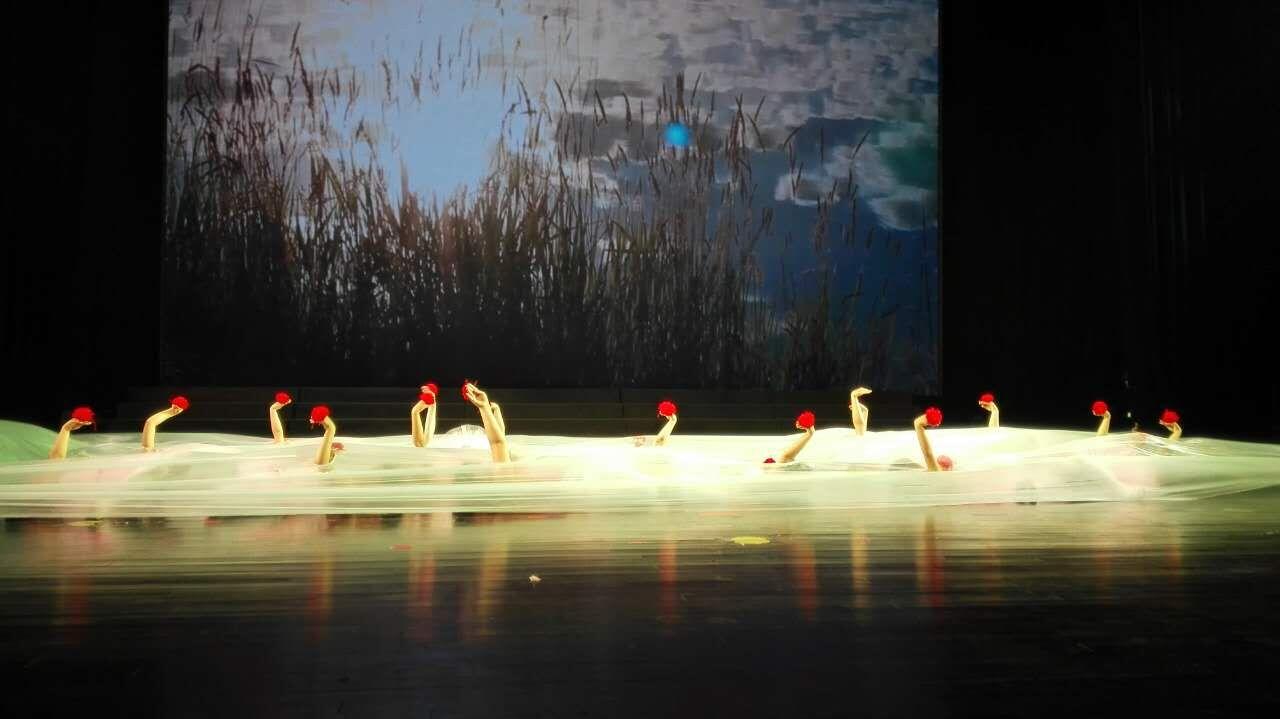丹顶鹤_两岸幼儿园六一音乐会 做改变世界的中国力量